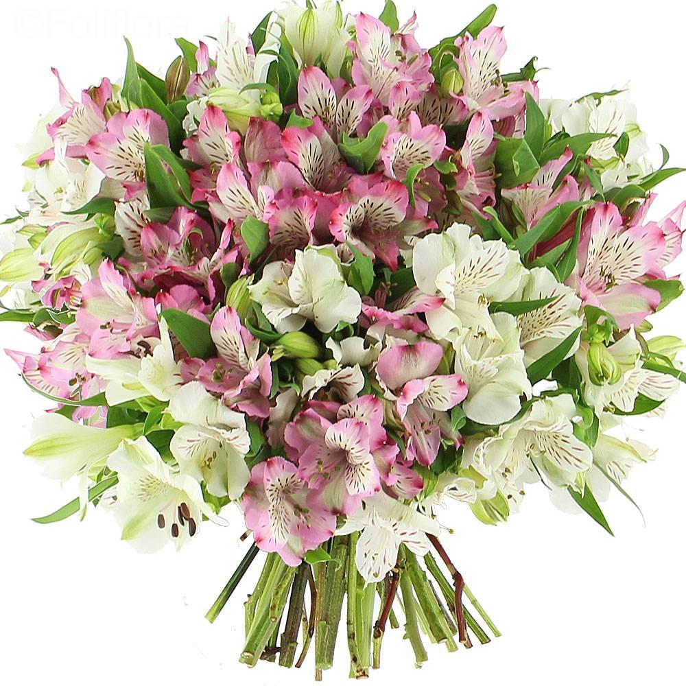 Livraison d licates alstroem rias classique bouquet de for Fleurs livres a domicile
