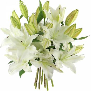 Bouquet de fleurs - Grand bouquet de Lys blanc