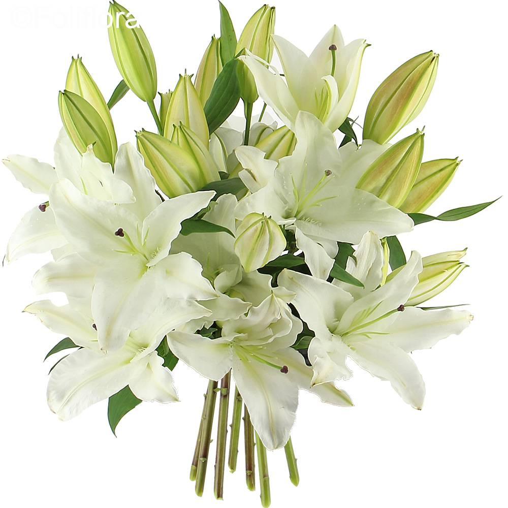 Bouquet lys mariage for Bouquet de lys