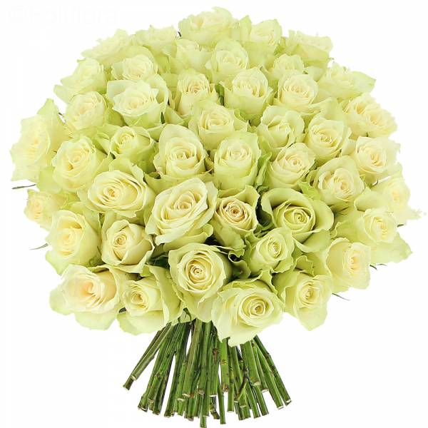 bouquet-roses-blanches