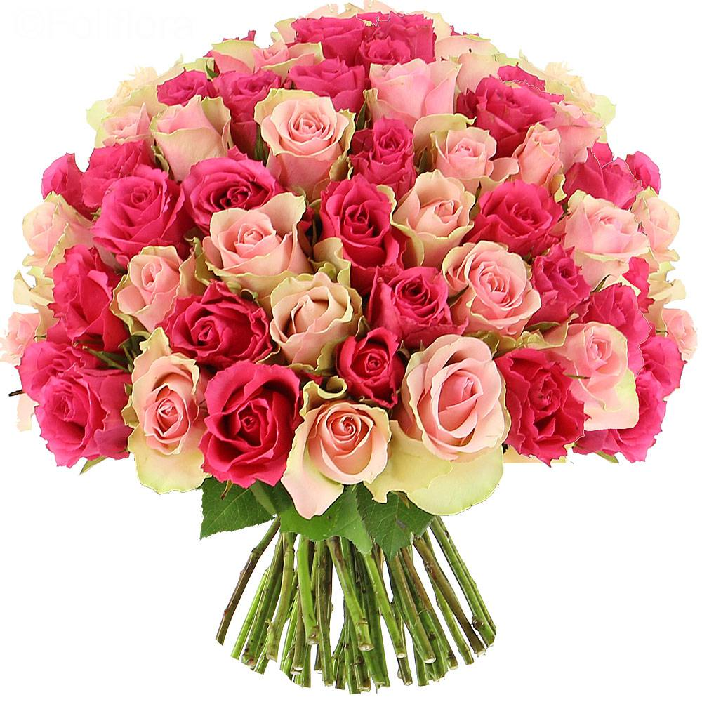 Livraison roses sweety 25 roses bouquet de roses for Images of bouquets of roses