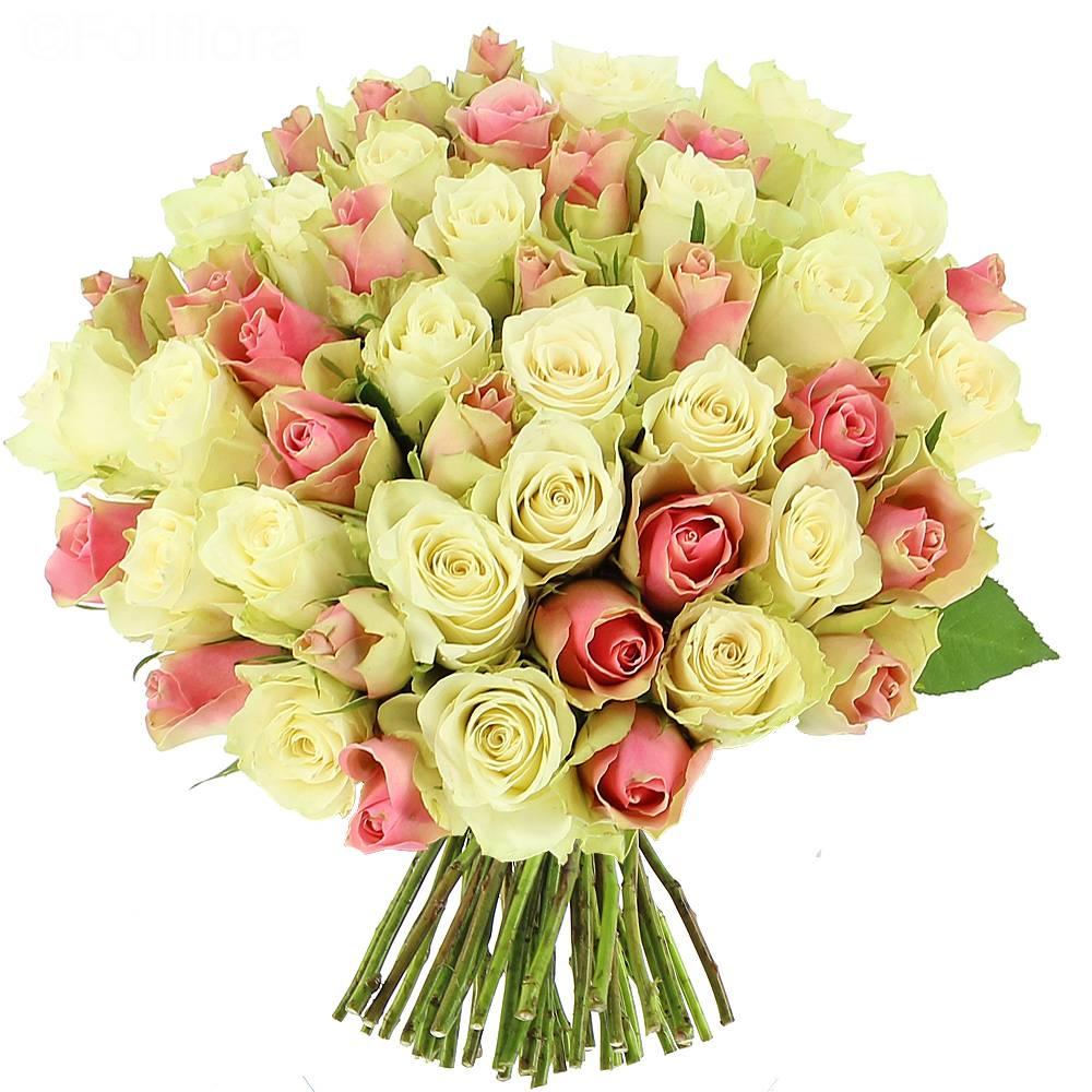 Livraison bouquet de roses douceur 25 roses bouquet de for Bouquet de rose