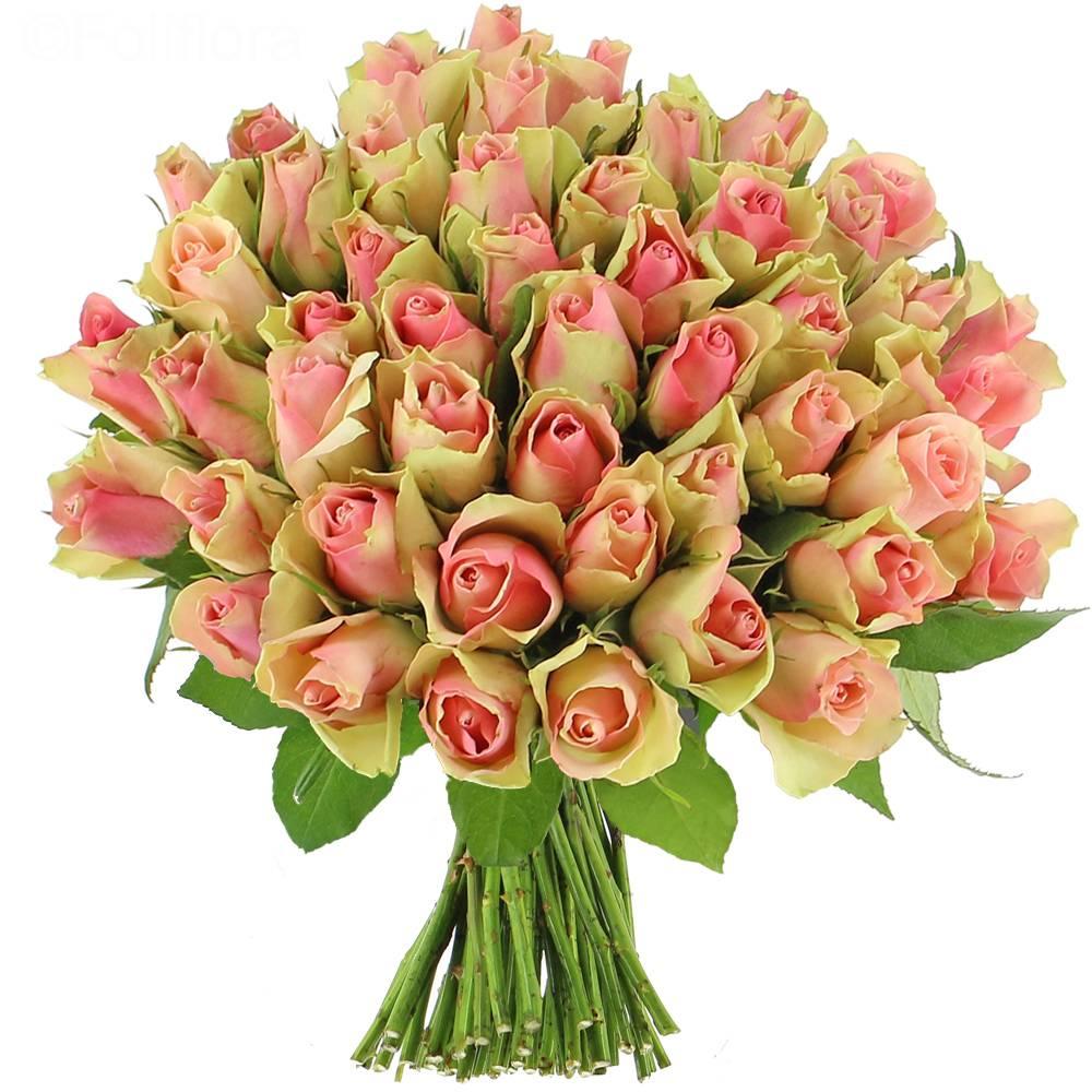 livraison roses pinky 25 roses bouquet de roses foliflora. Black Bedroom Furniture Sets. Home Design Ideas