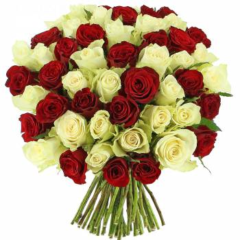 Bouquet de roses - Roses Sensation