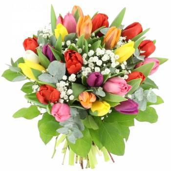 Bouquet de fleurs - Tulipes et Gypsophile