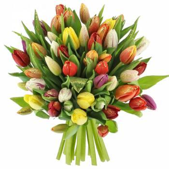 livraison fleurs pas cher promotions foliflora. Black Bedroom Furniture Sets. Home Design Ideas