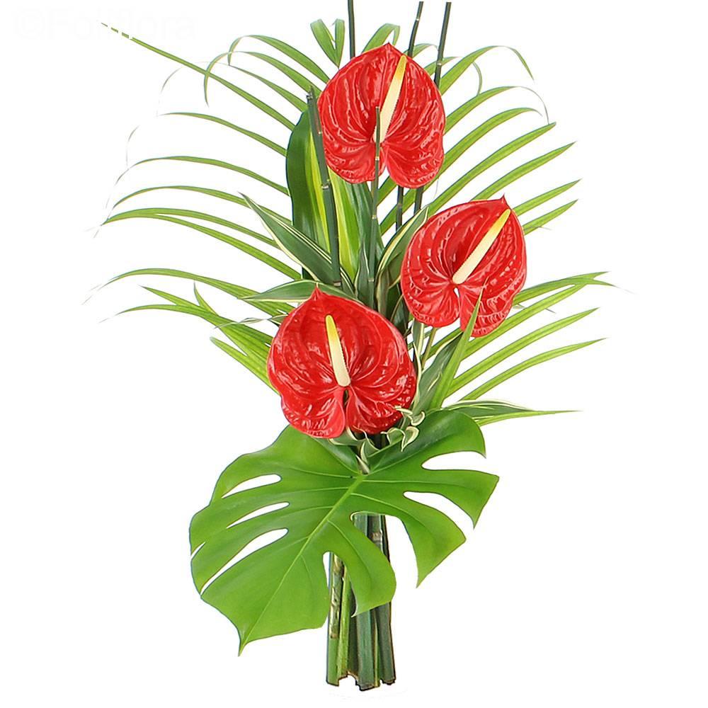 Livraison bouquet zen passion bouquet de fleurs foliflora for Bouquet de fleurs zen