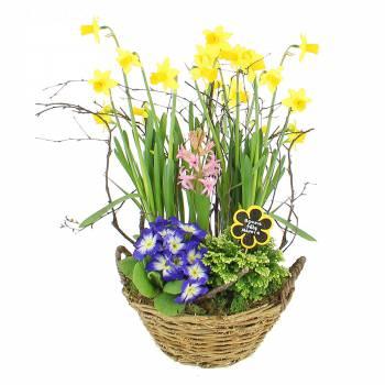 Composition florale - Composition Bonne Fête Mamie