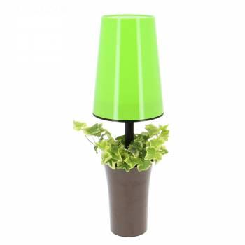 Plante verte - Lumiplante
