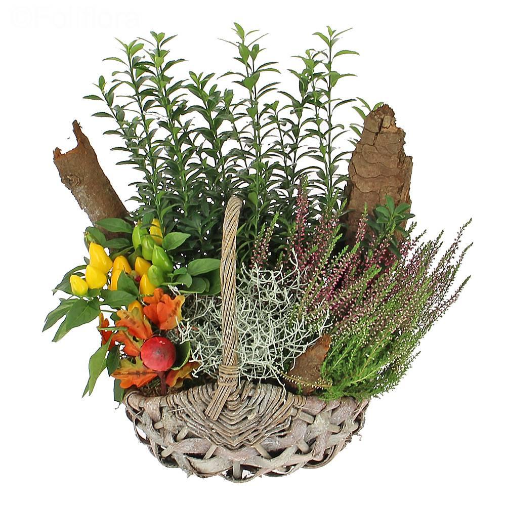 Livraison panier d 39 automne composition florale foliflora - Composition florale automne ...