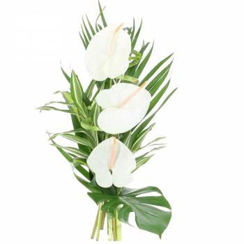 Tous les produits - Bouquet Zen Élégance