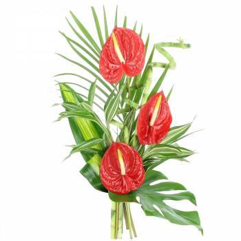 Tous les produits - Bouquet Zen Passion