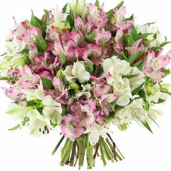 Bouquet de fleurs - Délicates Alstroemérias