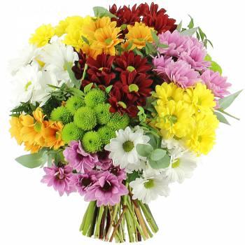 Bouquet de fleurs - Bouquet de Chrysanthèmes