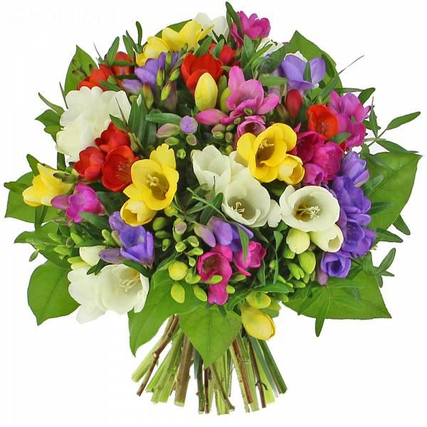 bouquet-de-freesias