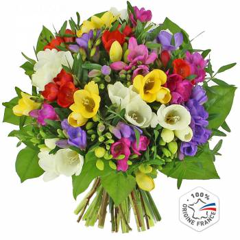 Bouquet de fleurs - Le bouquet de Freesias