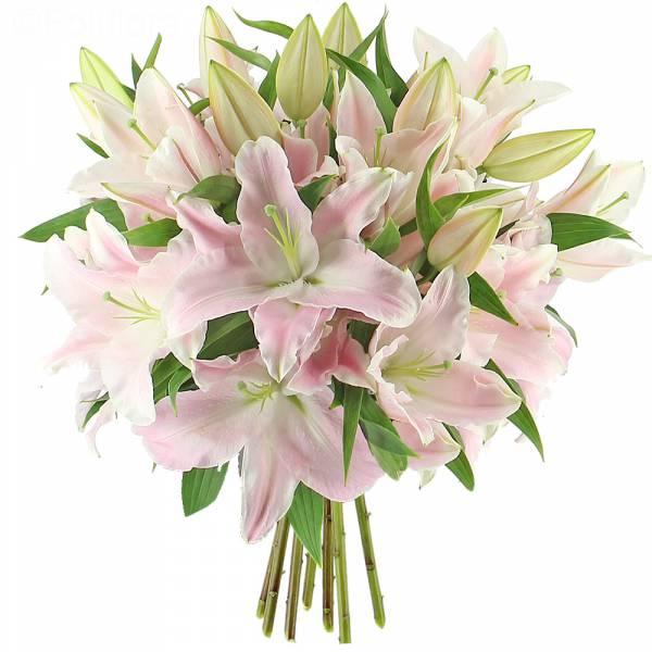 livraison majestueux lys roses format classique bouquet de fleurs foliflora. Black Bedroom Furniture Sets. Home Design Ideas