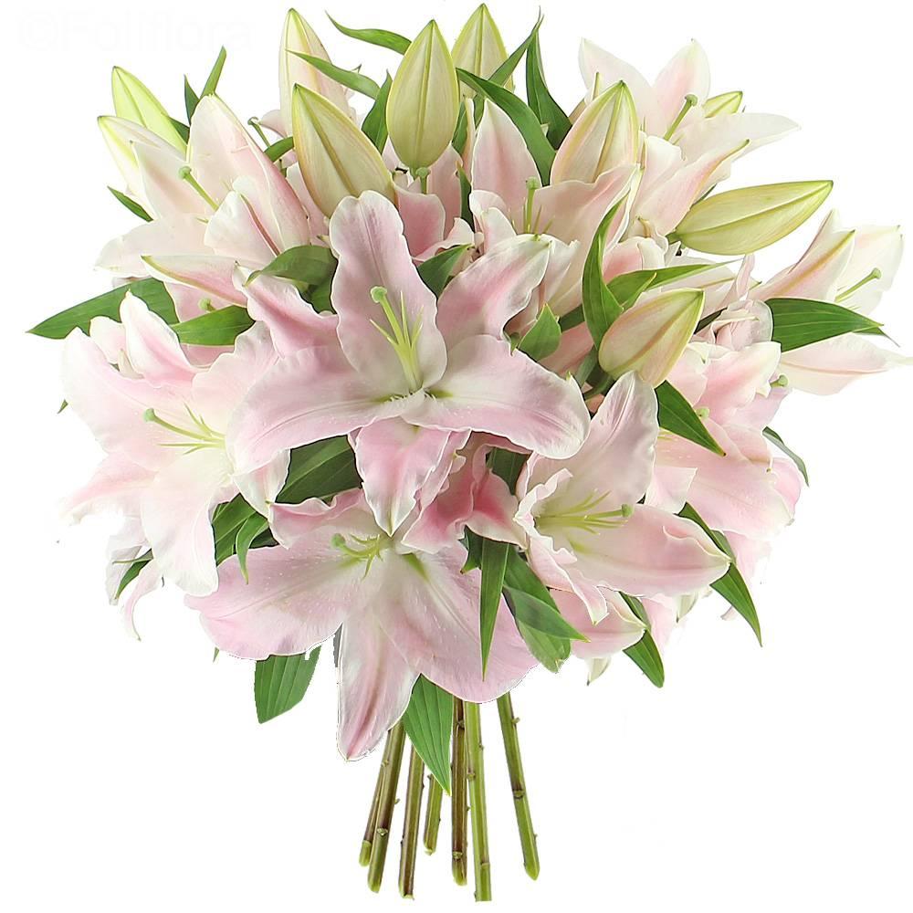 Livraison majestueux lys roses format classique for Livraison bouquet de fleurs kenitra