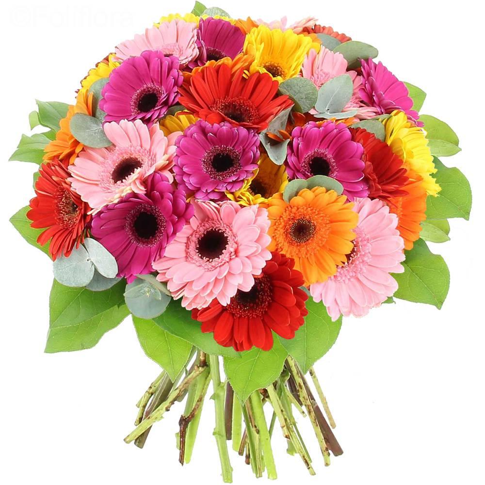 Livraison pop colors bouquet de fleurs foliflora for Bouquet de fleurs livraison a domicile