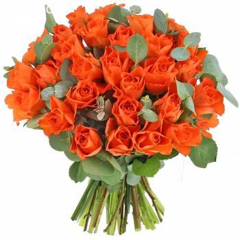 Livraison express : Roses Andalouses - Classique