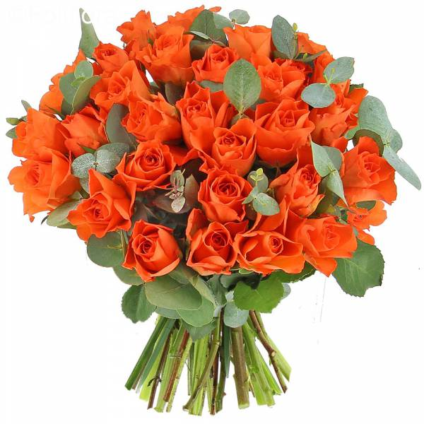 bouquet-roses-andalouses