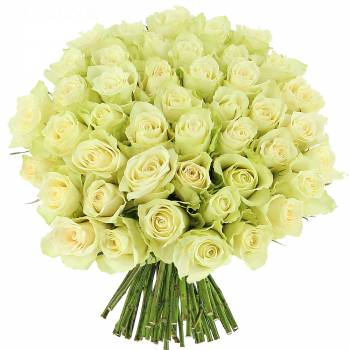 Bouquet of roses - Elegance white roses