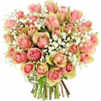 Bouquet de roses - Roses Caresses