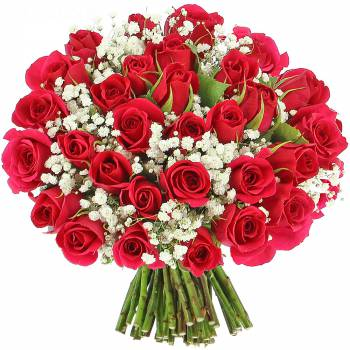 Bouquet of roses - Delight Roses