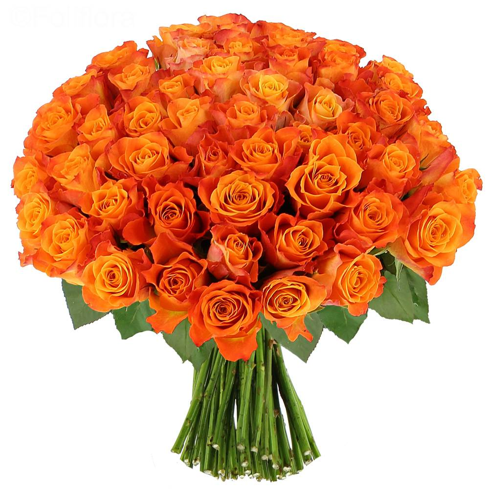 Livraison roses sunset bouquet de roses foliflora for Bouquets de roses