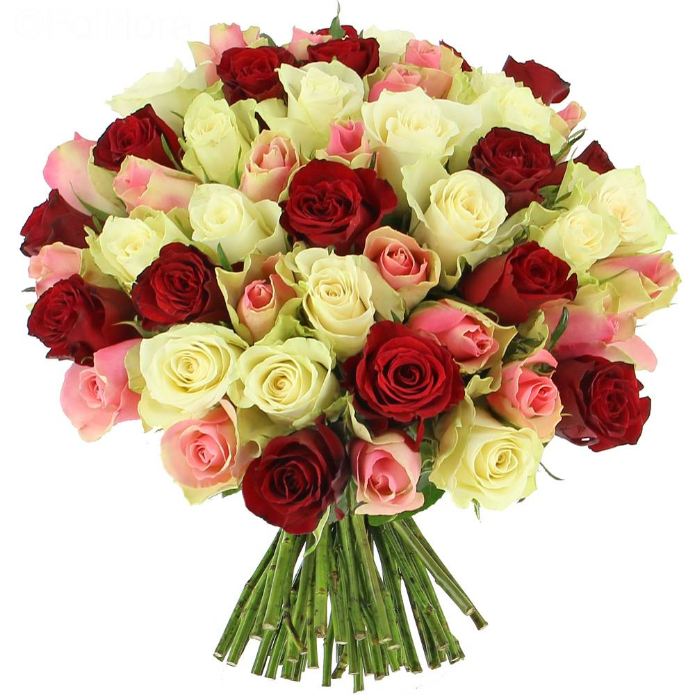 Livraison roses tendresse 25 roses bouquet de roses for Bouquet de fleurs photo