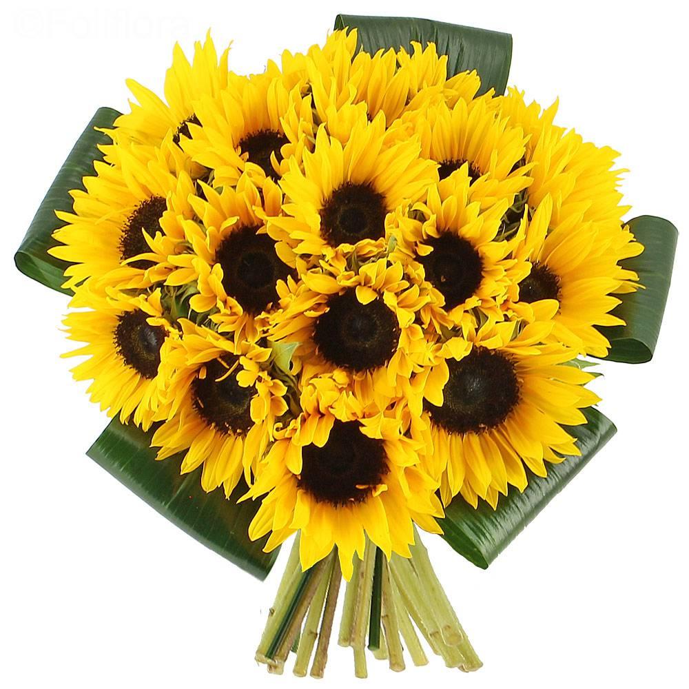 Livraison bouquet de soleils bouquet de fleurs foliflora for Bouquet de fleurs livraison