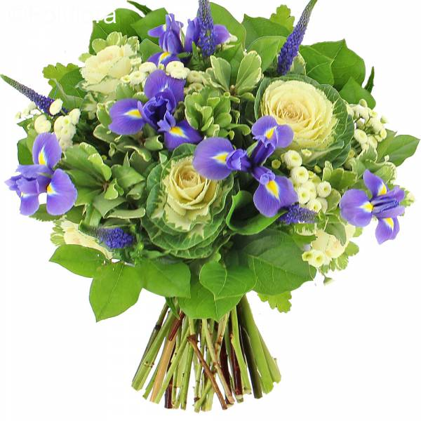 Livraison bouquet trop chou bouquet de fleurs foliflora for Bouquet livraison