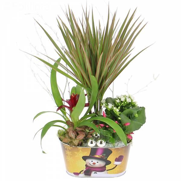 Livraison composition de no l composition florale for Livraison composition florale