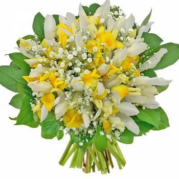 Bouquet de fleurs - Bouquet d'Iris Apollo