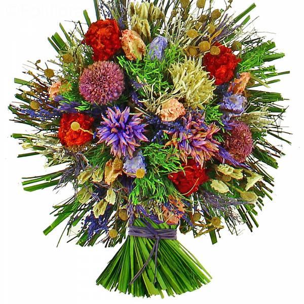 fleurs-sechees-mila