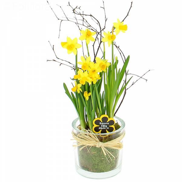 Livraison mamie composition florale foliflora for Livraison composition florale