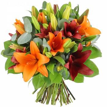 Bouquet de fleurs - Multitude de Lys