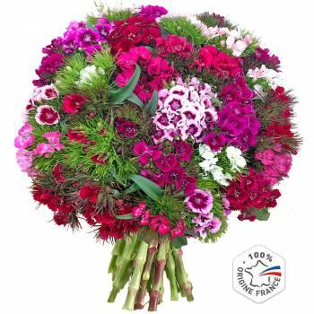 Bouquet de fleurs - Oeillets de Poète