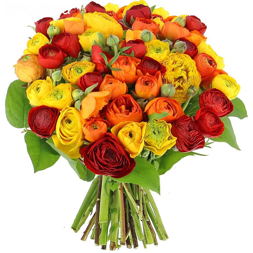 livraison renoncules flamboyantes bouquet de fleurs foliflora. Black Bedroom Furniture Sets. Home Design Ideas