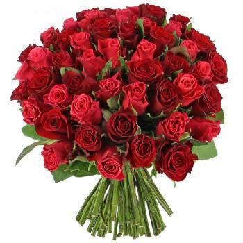 Envoi express : Camaïeu de roses - 25 Roses