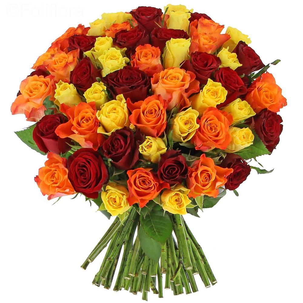Livraison roses estivales bouquet de roses foliflora for Livraison rose
