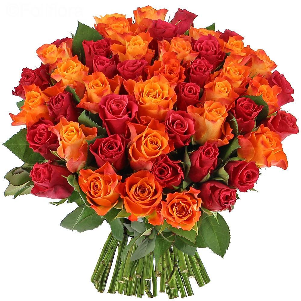 Livraison roses flamboyantes bouquet de roses foliflora for Livraison rose