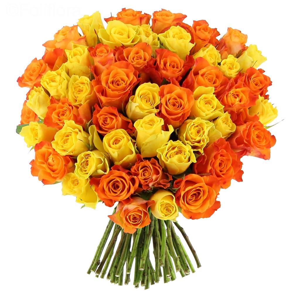 Livraison roses sunrise bouquet de roses foliflora for Livraison rose