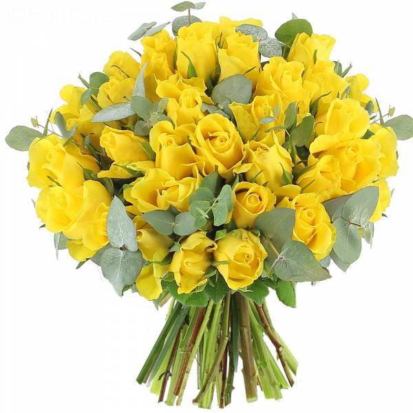 roses-sunshine